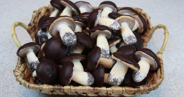 Original Mushroom cookies