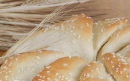 Bread Pogacice