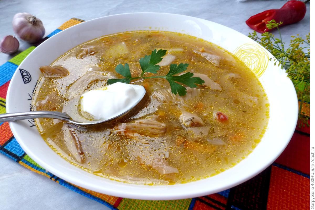 Gruzdyanka, or Soup from fresh milk mushrooms