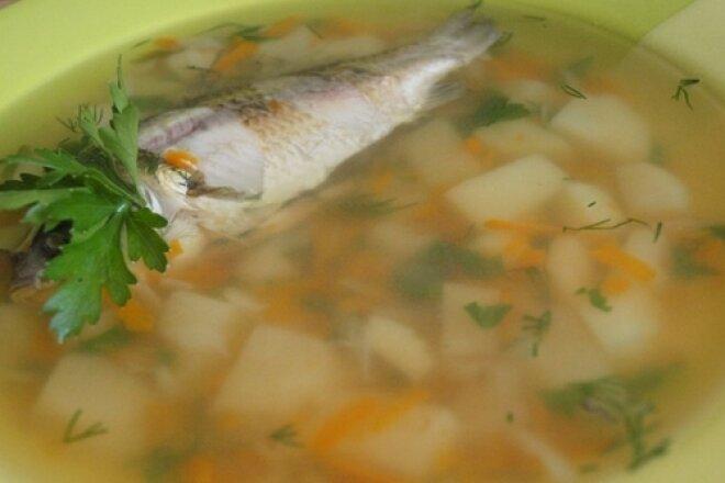 Classic carp fish soup