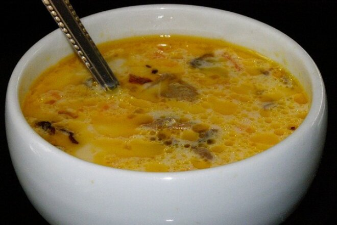 Chicken soup with cheese and mushrooms