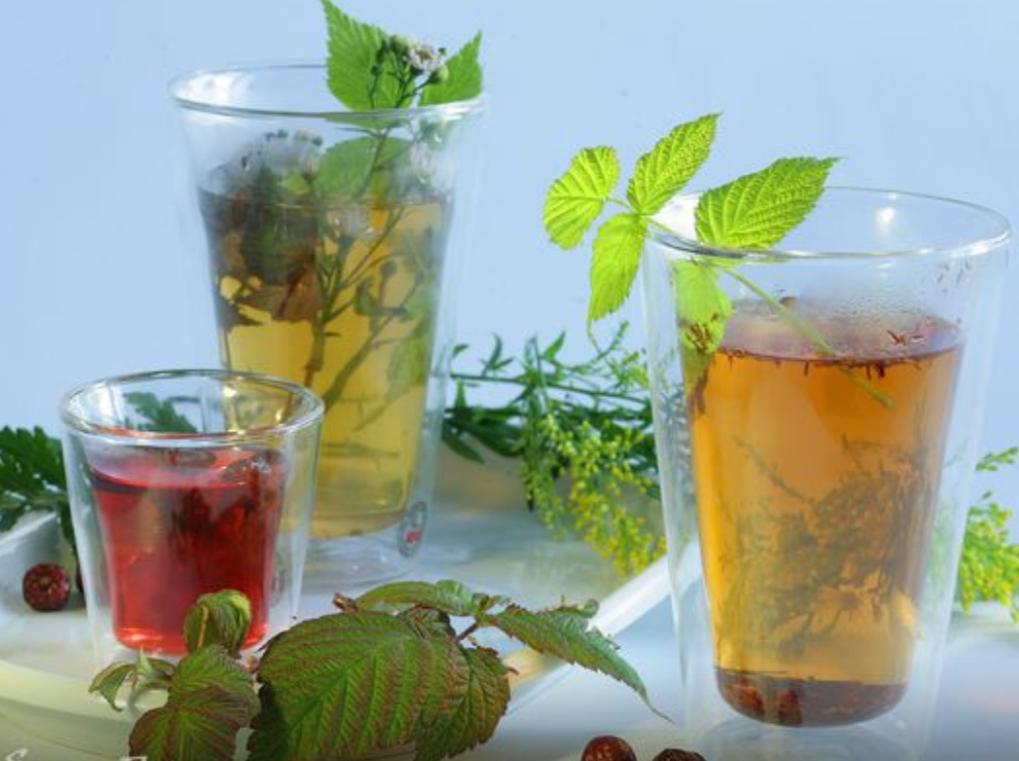 Nettle and Rosehip Tea
