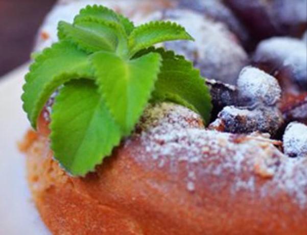 Zwetchgenkuchen - Bavarian Plum Cake