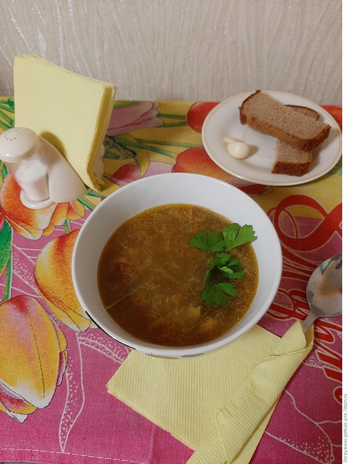 Fresh porcini mushroom soup