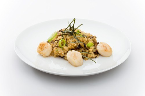 Scallops in a creamy sauce with mushrooms and rice
