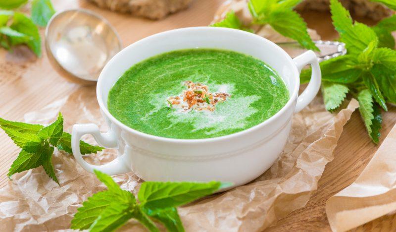 Nettle puree soup
